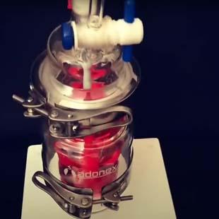 Reator químico encamisado ADONEX: tudo que você precisa